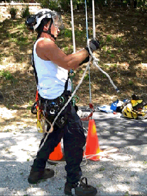 About Neck of the Woods Tree Service - Emerald Hills, Redwood City CA Arborist - Eddie-NOTW